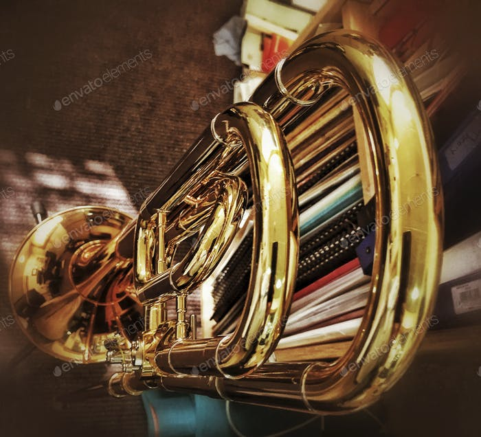 Knochen des Horns