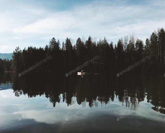Kayak mirrored on a glassy lake