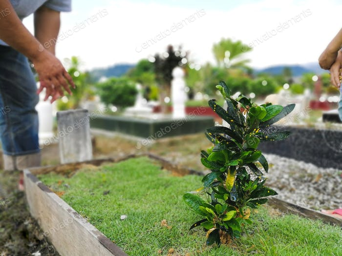 muslim grave with green plants and grass in the graveyards