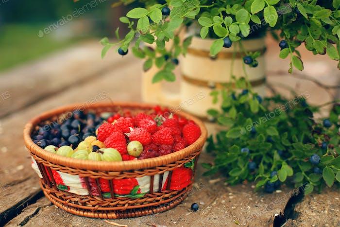 basket of vitamins