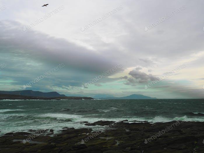 Wilde Irische See