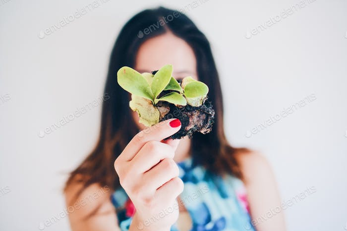 Woman holding stag horn plant