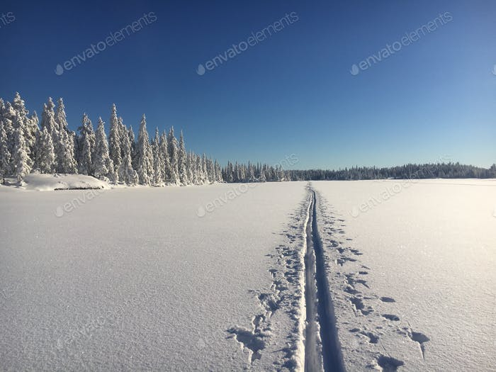 Winter bliss - calm, white and bright. A single ski track across the lake.
