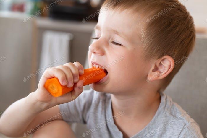 a boy of European appearance eats a carrot