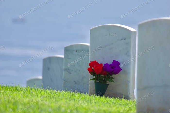 Flowers on a green hillside at Fort Rosecrans National Cemetery overlooking the ocean in the