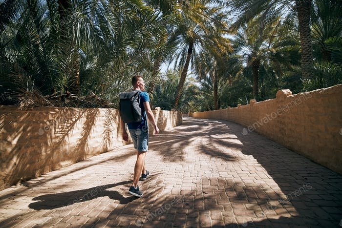 Young solo traveler walking in the middle of palm trees. Desert oasis in Al Ain, Emirate Abu Dhabi,