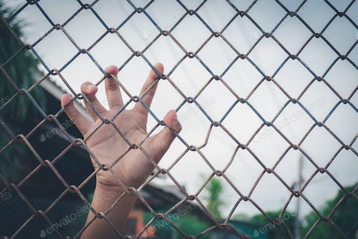 Kinderhände auf Mesh-Metall-Zaun