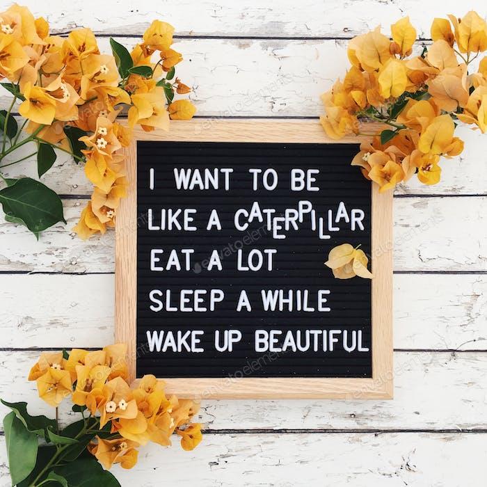 Letter board caterpillar advice; humor