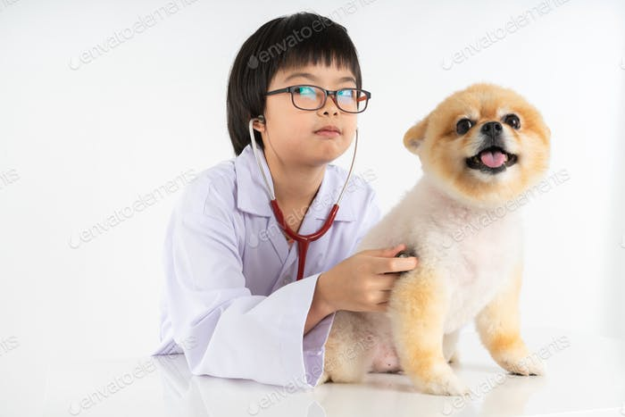 Studio shot of girl and puppy on white background