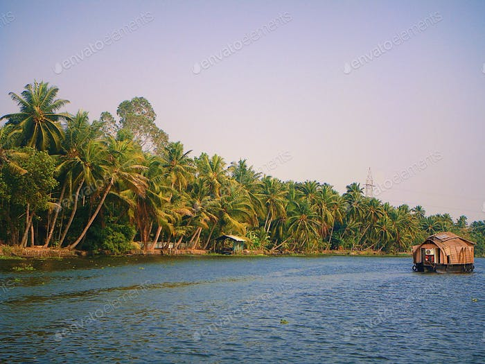 A scenic view of backwaters at Kerala India