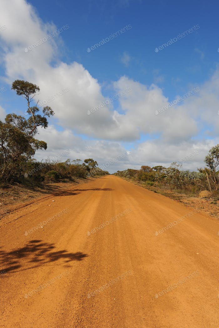 Outback road and Australian bush in rural WA. Diminishing perspective down straight road to horizon