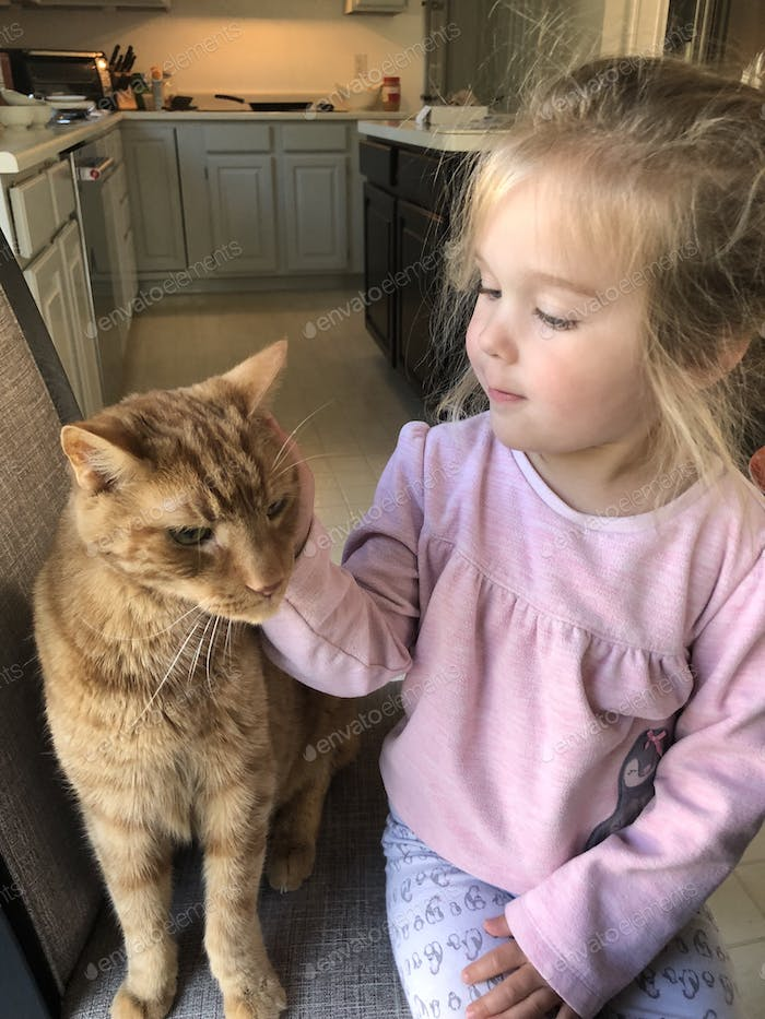 Toddler in kitchen with cat getting pets