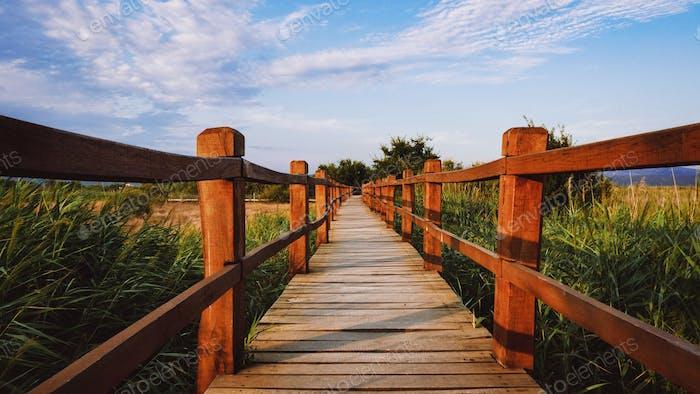 Wooden footpath