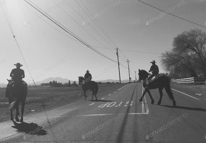 Cowboys of California