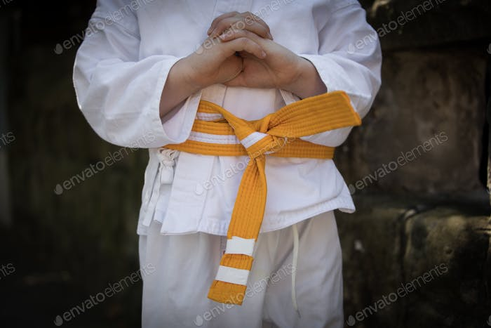 Young child karate stance