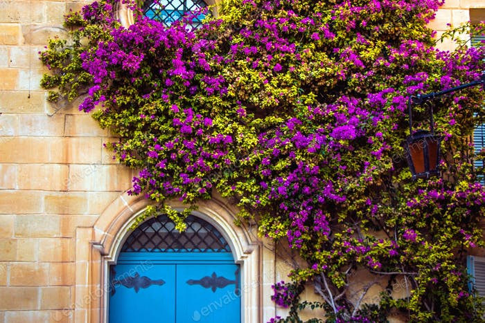 Mdina doorways