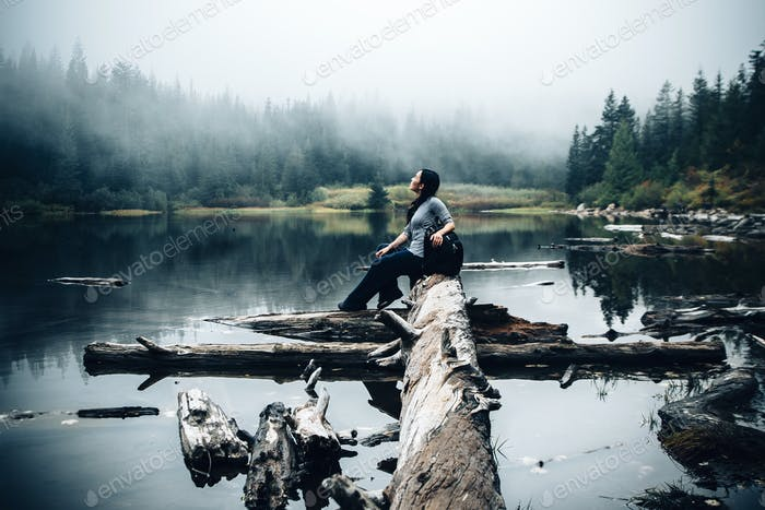 meditation in the forest