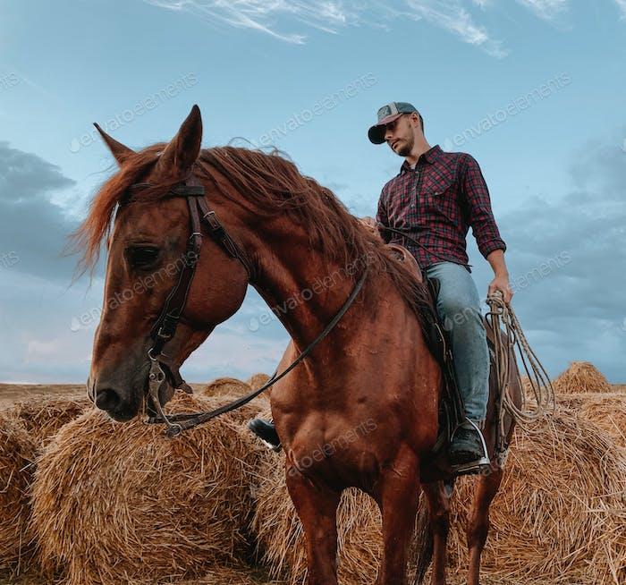 cowboy on horseback against a beautiful sunset, rude horse, hay, farm life , horseback riding,