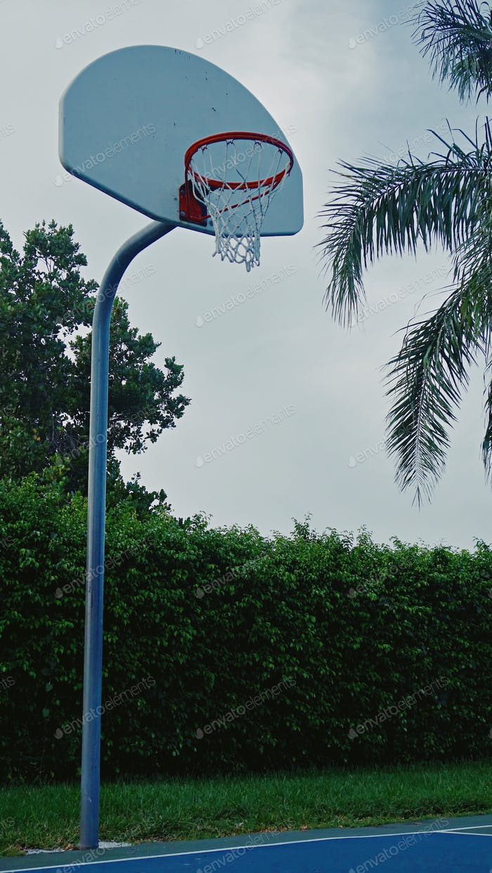 At The Hoop