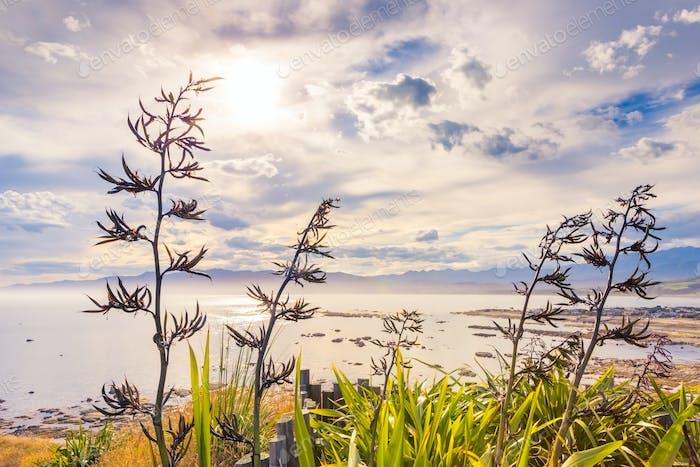 A serene coastal view