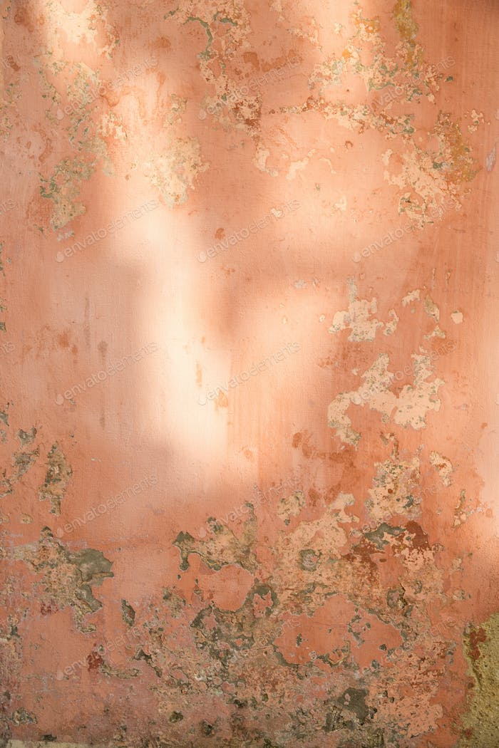 A textured, peach colored wall with dappled light