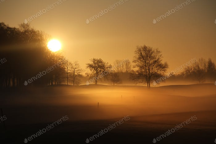 Sunrise magic landscape on a foggy february morning at the golf court