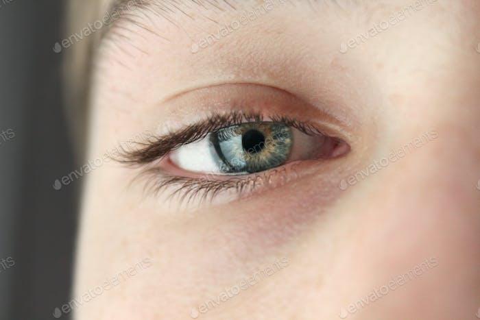 Close up of the eye, eyelashes, iris, pupil