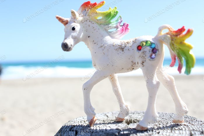 Unicorn on the beach