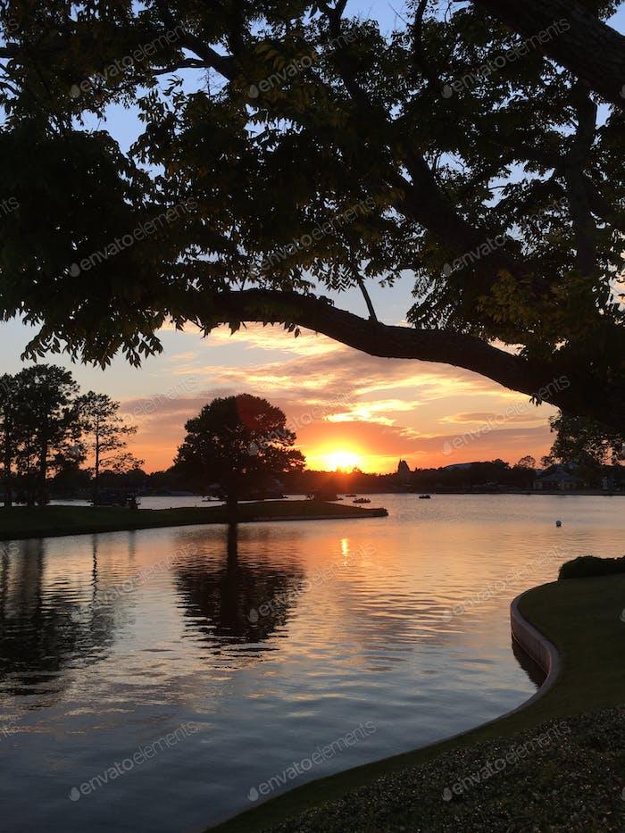 Sunset at Disney Epcot