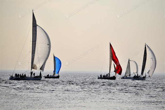 Sailing ⛵️
