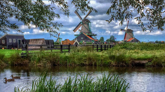 Windmühlen von Nordholland