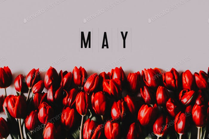 Month of May, May background, calendar