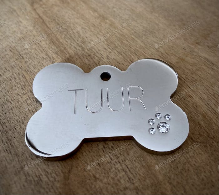 Silver bone shaped dog tag with a diamond paw and the dog's name inscripted
