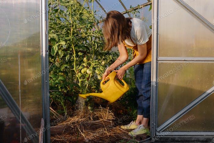 caucasian woman in a greenhouse in her garden watering plants