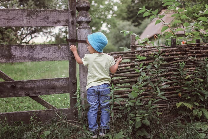 Cute 4-5 years boy in blue hat peering through an old wooden fence of country house