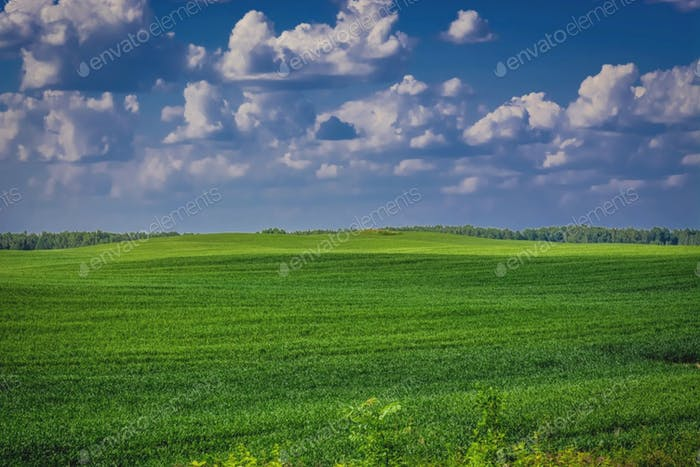 Latvian nature landscape. Beautiful desktop wallpaper