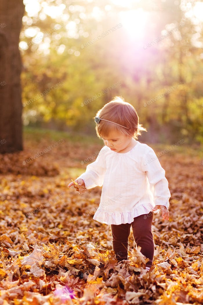 Toddler in the leaves on a fall afternoon