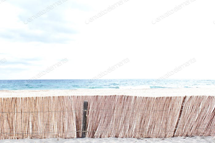 Beach landscape background