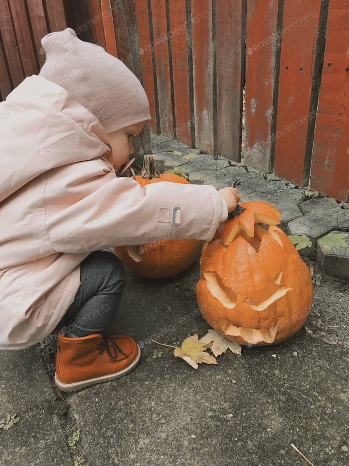 Toddler inspecting Halloween decorations