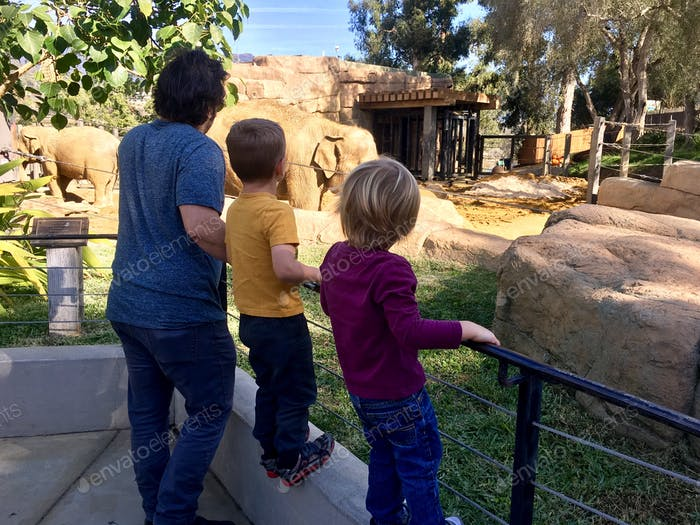 Family at the zoo looking at animals