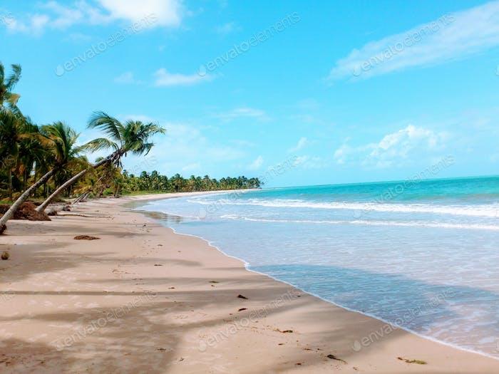 Somewhere in Alagoas, Brazil