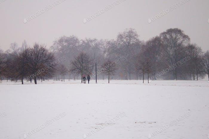 People walking in snowy field during snow storm