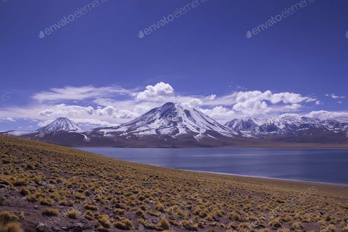 Altiplano Chile. Laguna Miscanti.
