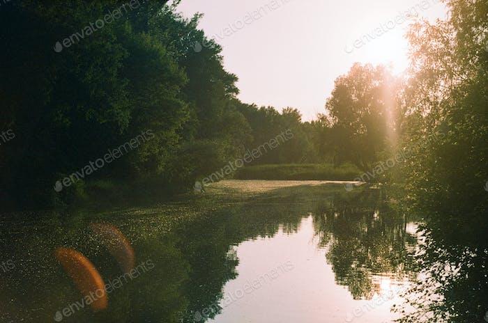 Analog lake