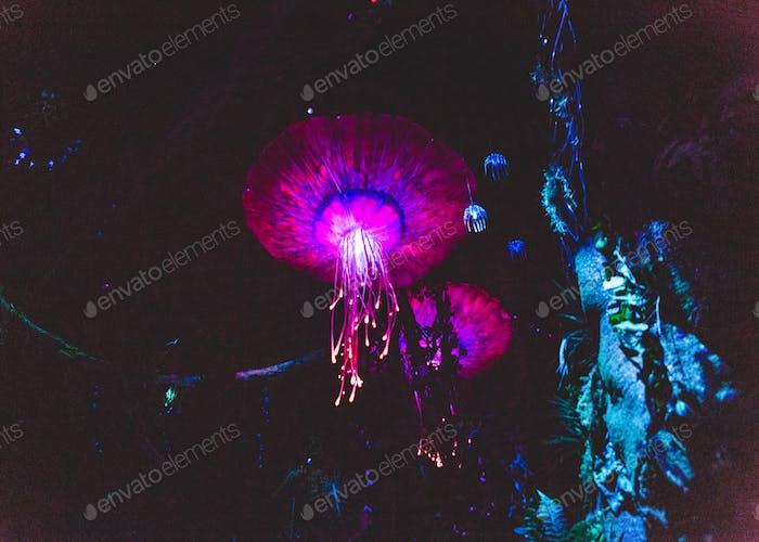 Glowing Alien