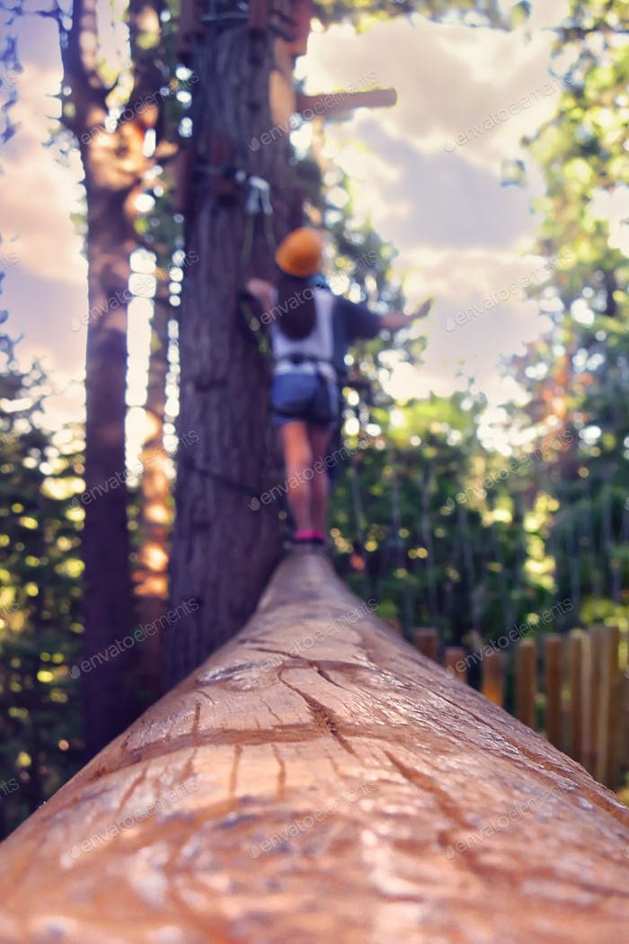 Almost at the end of a treetop obstacle course in Lake Tahoe.