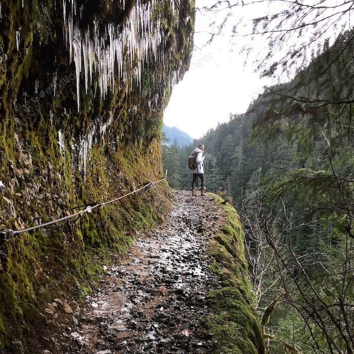 Eisige Wanderung bis zum Punch Bowl Falls
