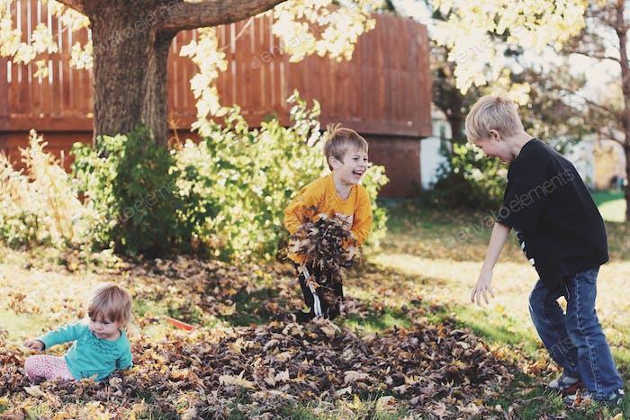 Leaf fight.