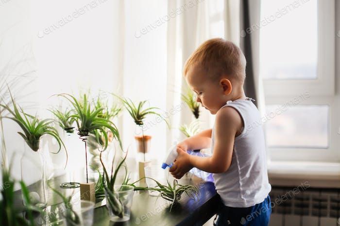 Caucasian Kind Junge Bewässerung Haus Pflanzen, Pflege und Pflanzung