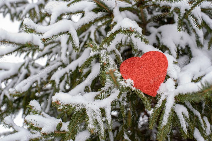 Paper valentine heart left in tree for someone to find